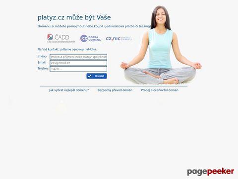 Platyz - Die Weltweite Verkausgalerie