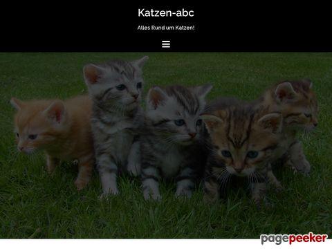 katzen-abc.de - Katzen-ABC - Alle wichtigen Informationen rund um Katzen