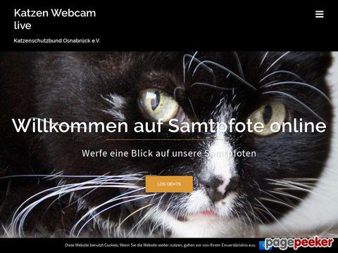 Samtpfote-online - Das Online-Magazin des Katzenschutzbund Osnabrück e.V. (Deutschland)