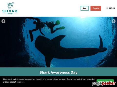 sharktrust.org- Shark Trust - Hai-Stiftung