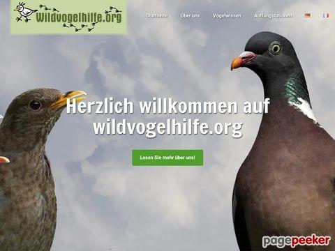 Wildvogelhilfe.org - Praktische Tipps für Vogelfreunde