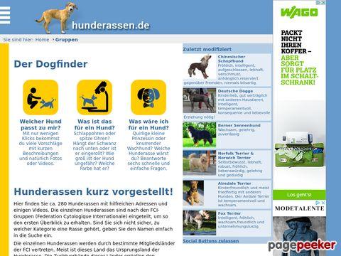 Hunderassen.de eine Vorstellung von Rassehunden