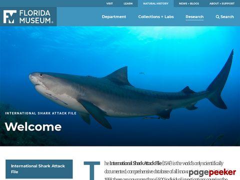 International Shark Attack File