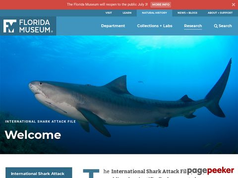 International Shark Attack File Statistics of Shark Attacks